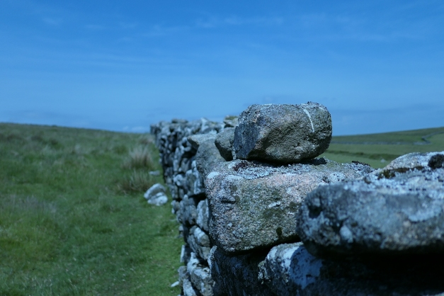 Wall_Dartmoor